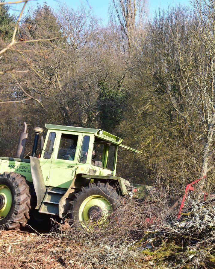 Erstpflege mit Forstmulcher